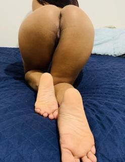 Morena bunduda no sexo caseiro